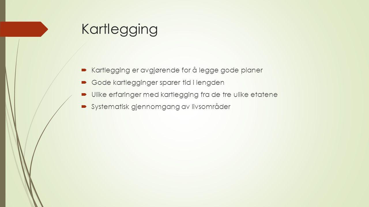 Kartlegging Kartlegging er avgjørende for å legge gode planer