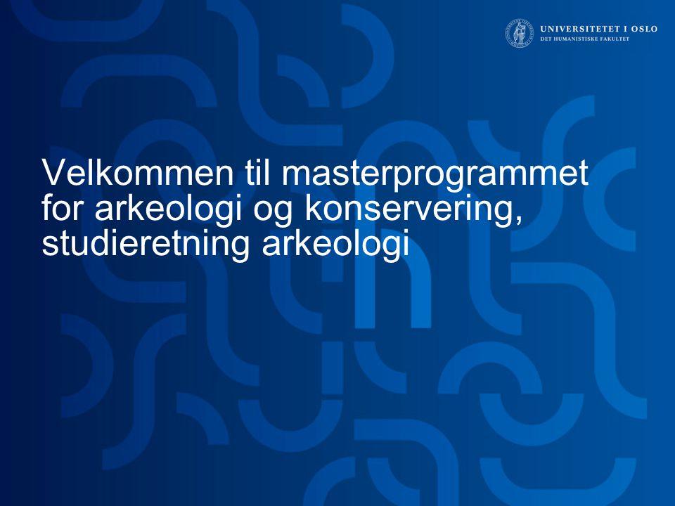 Velkommen til masterprogrammet for arkeologi og konservering, studieretning arkeologi