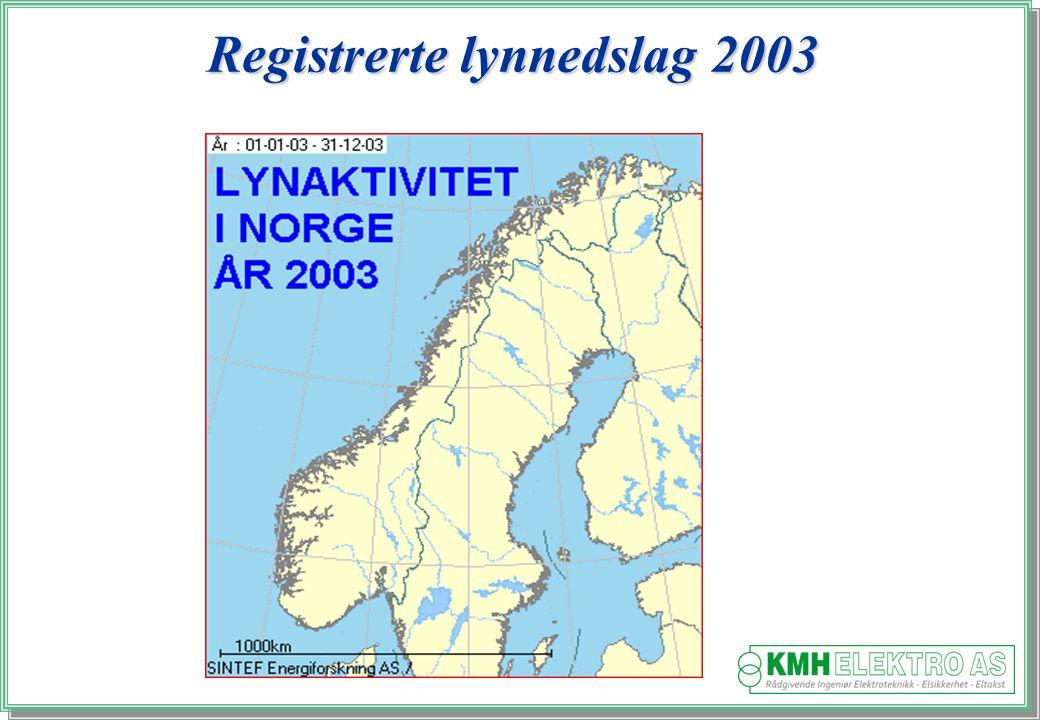 Registrerte lynnedslag 2003