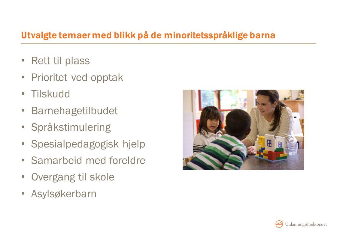 Utvalgte temaer med blikk på de minoritetsspråklige barna