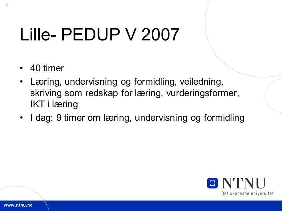 Lille- PEDUP V 2007 40 timer. Læring, undervisning og formidling, veiledning, skriving som redskap for læring, vurderingsformer, IKT i læring.