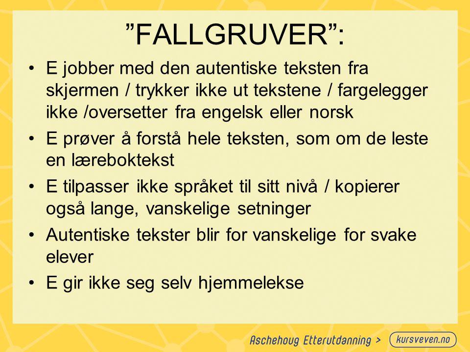 FALLGRUVER : E jobber med den autentiske teksten fra skjermen / trykker ikke ut tekstene / fargelegger ikke /oversetter fra engelsk eller norsk.
