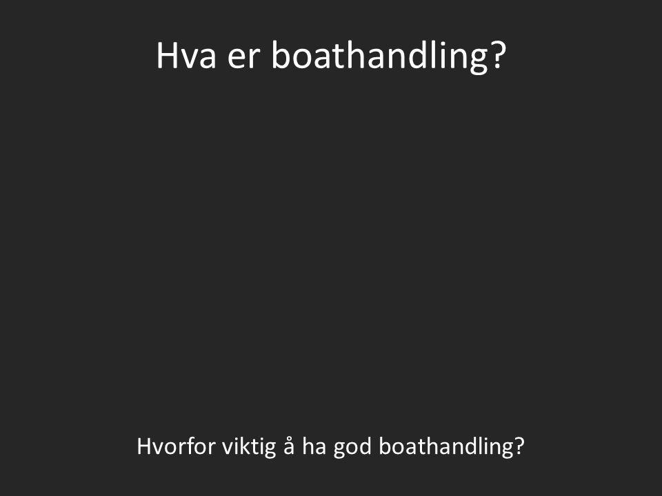 Hvorfor viktig å ha god boathandling
