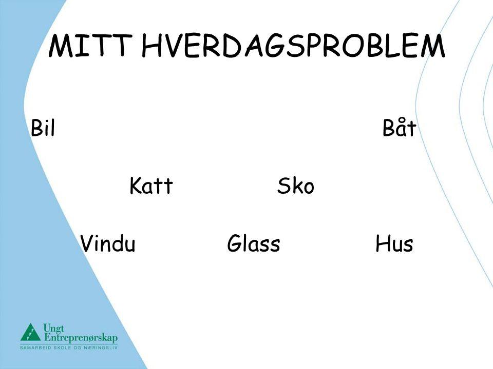 MITT HVERDAGSPROBLEM Bil Båt Katt Sko Vindu Glass Hus Rachel overtar