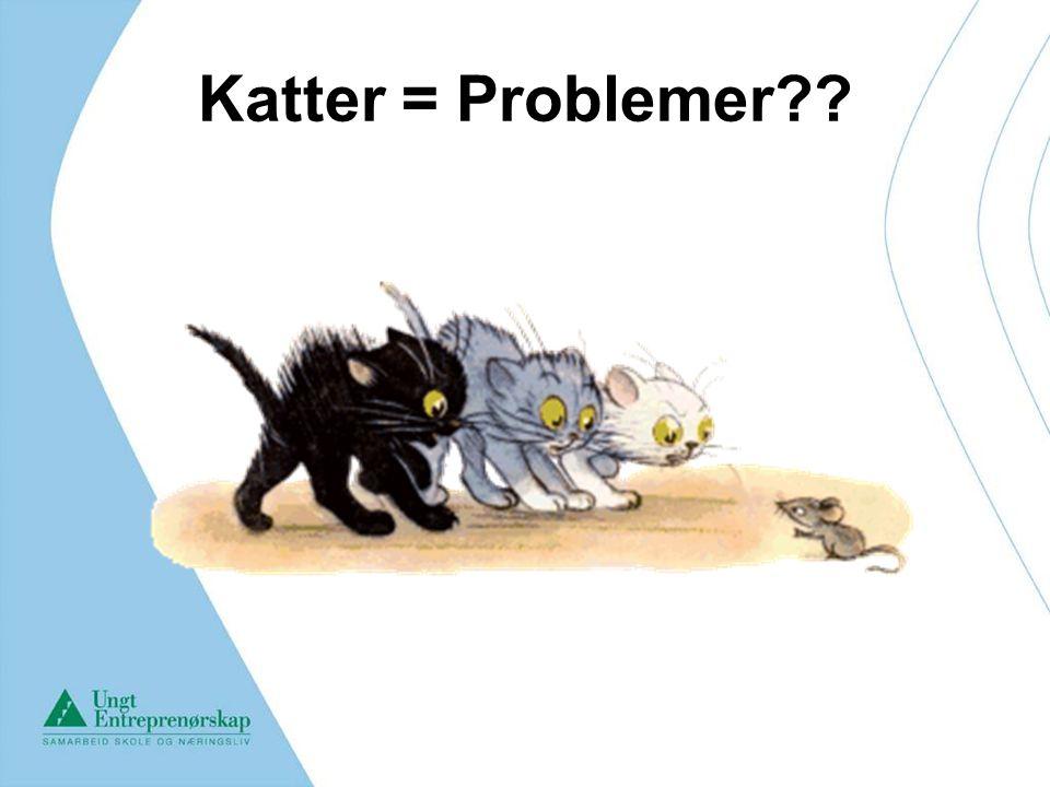 Katter = Problemer 2. Fins det hverdagsproblem knyttet ordene