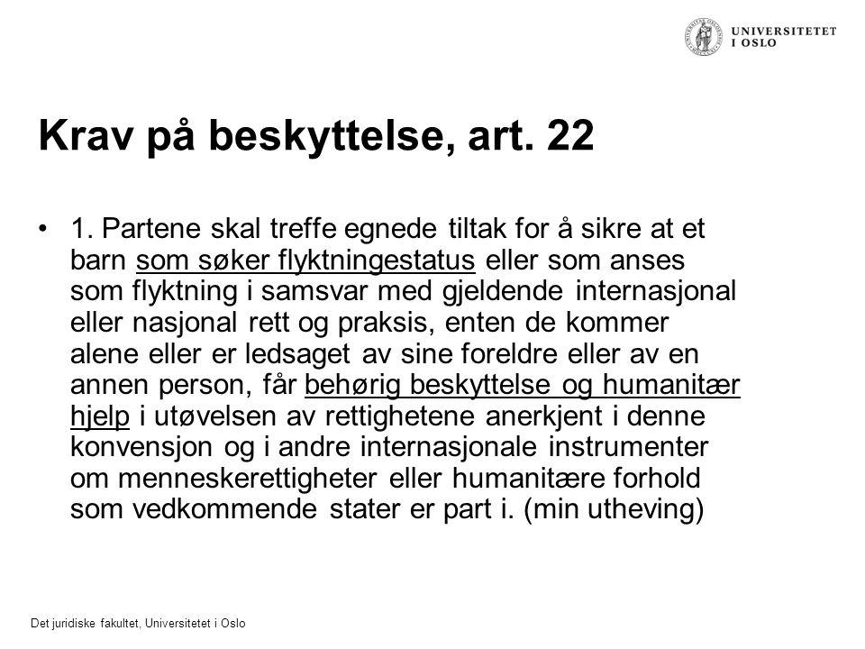 Krav på beskyttelse, art. 22