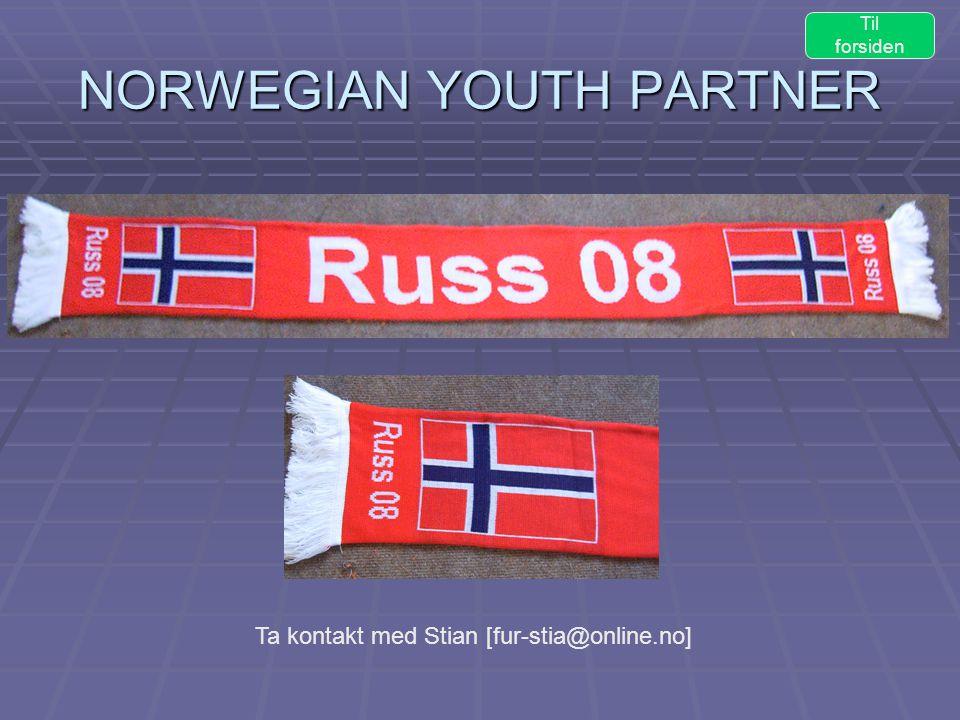 NORWEGIAN YOUTH PARTNER