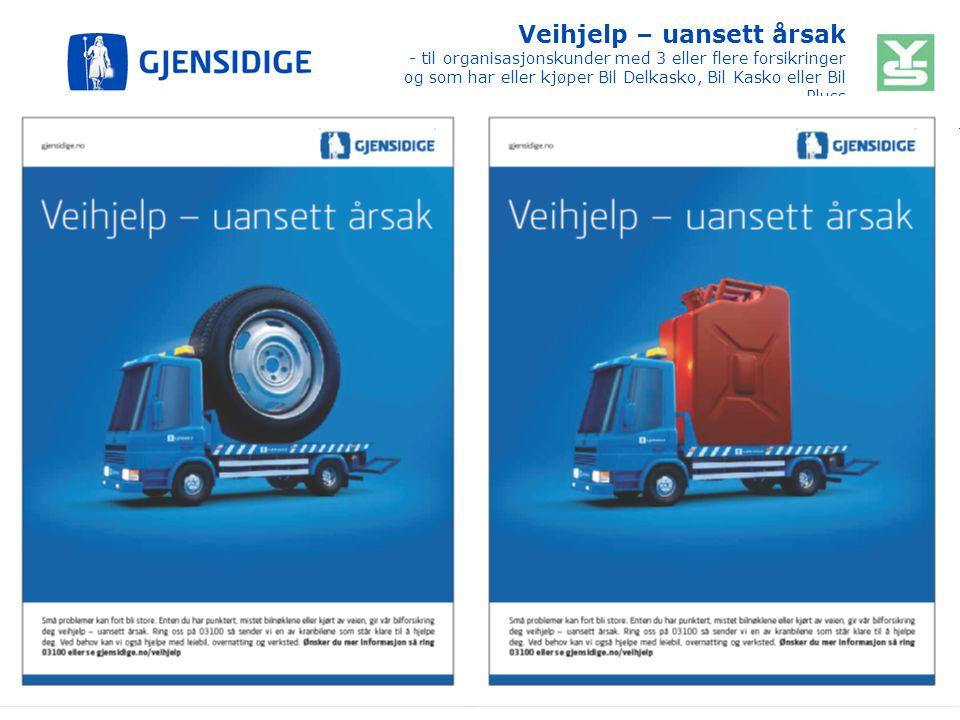 Veihjelp – uansett årsak - til organisasjonskunder med 3 eller flere forsikringer og som har eller kjøper Bil Delkasko, Bil Kasko eller Bil Pluss