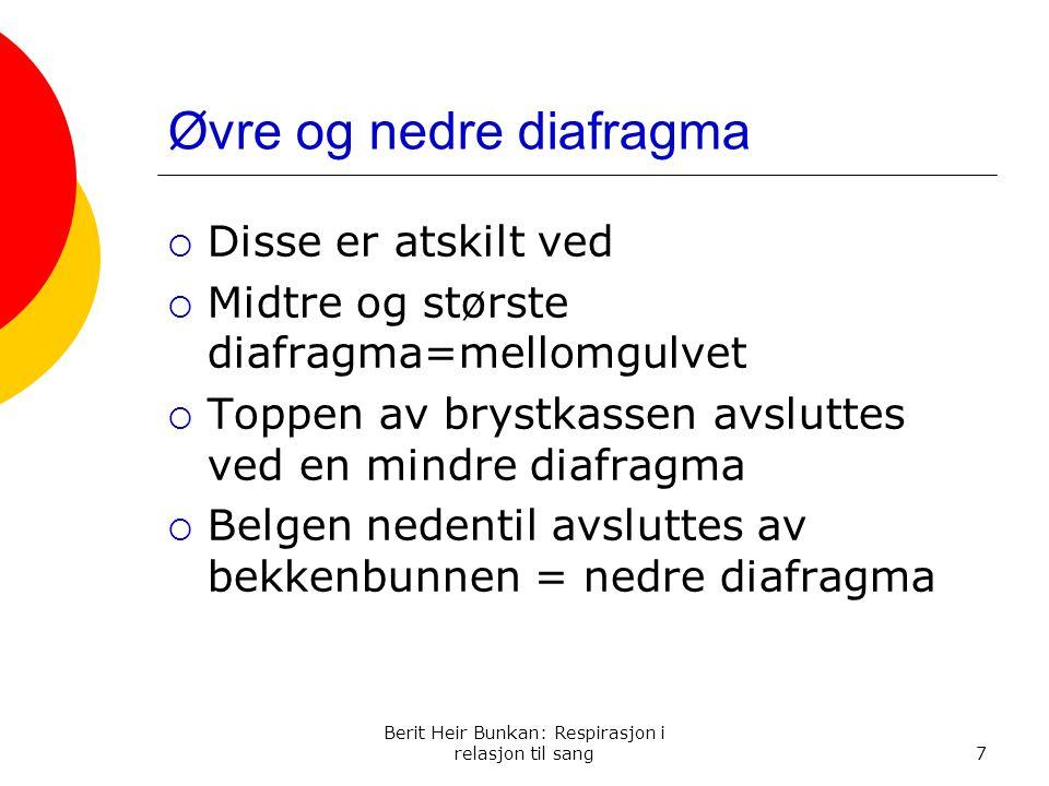 Øvre og nedre diafragma