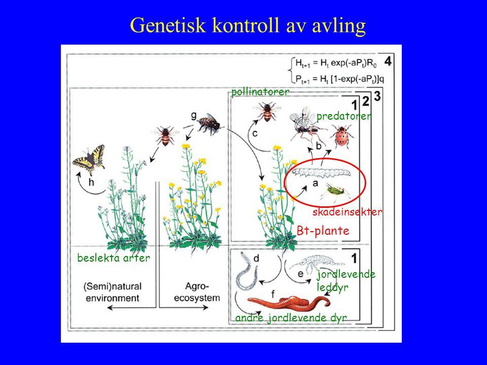 Genetisk kontroll av avling