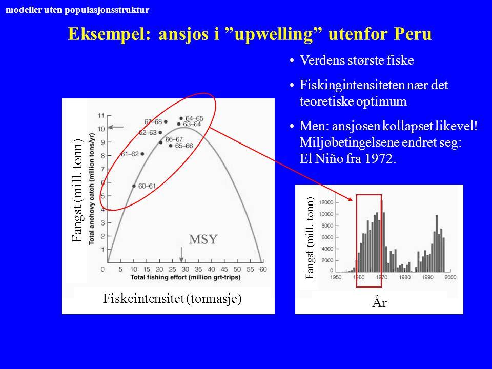 Eksempel: ansjos i upwelling utenfor Peru