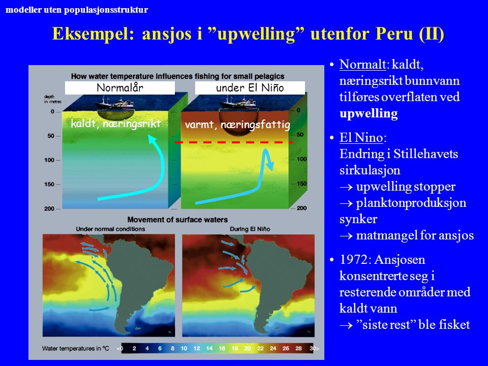 Eksempel: ansjos i upwelling utenfor Peru (II)