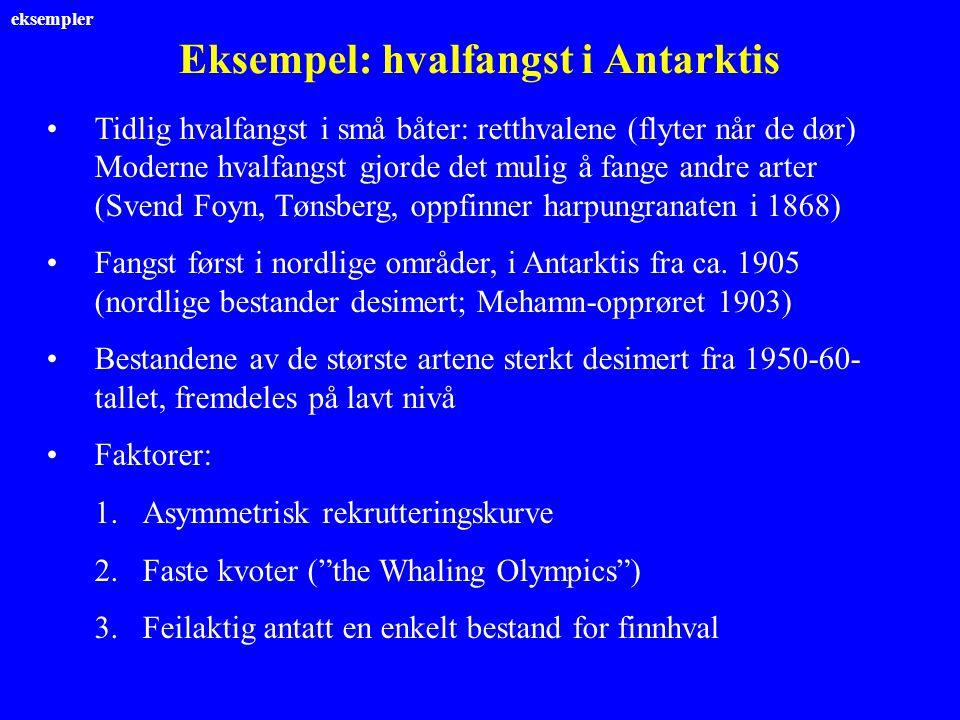 Eksempel: hvalfangst i Antarktis