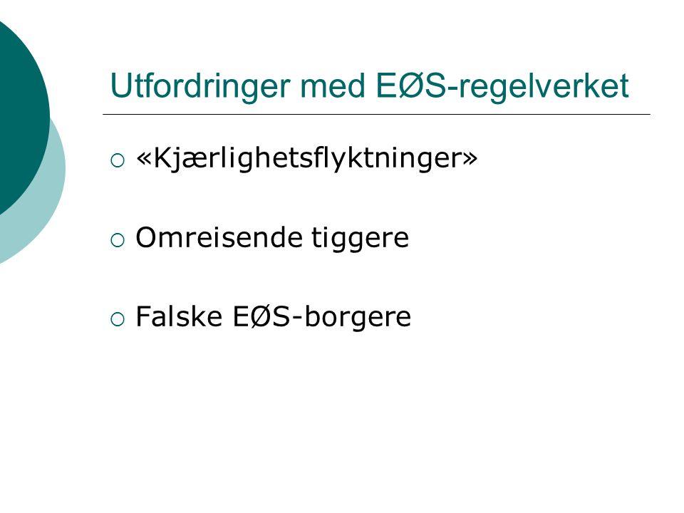 Utfordringer med EØS-regelverket