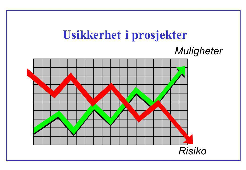 Usikkerhet i prosjekter