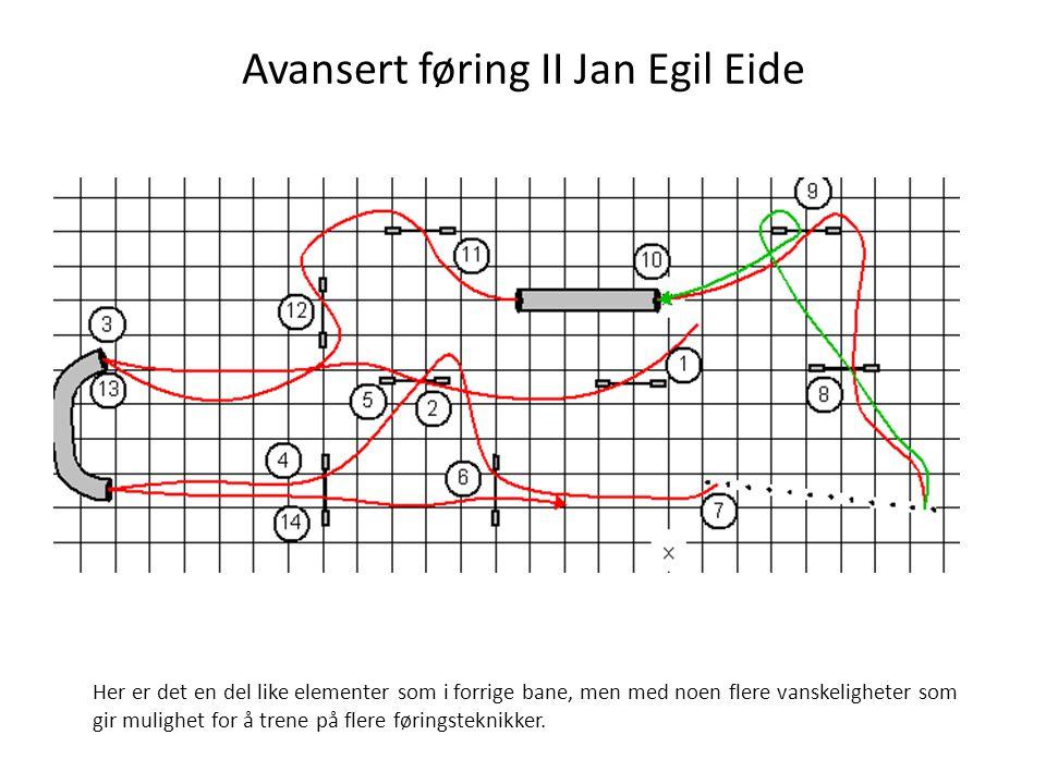 Avansert føring II Jan Egil Eide