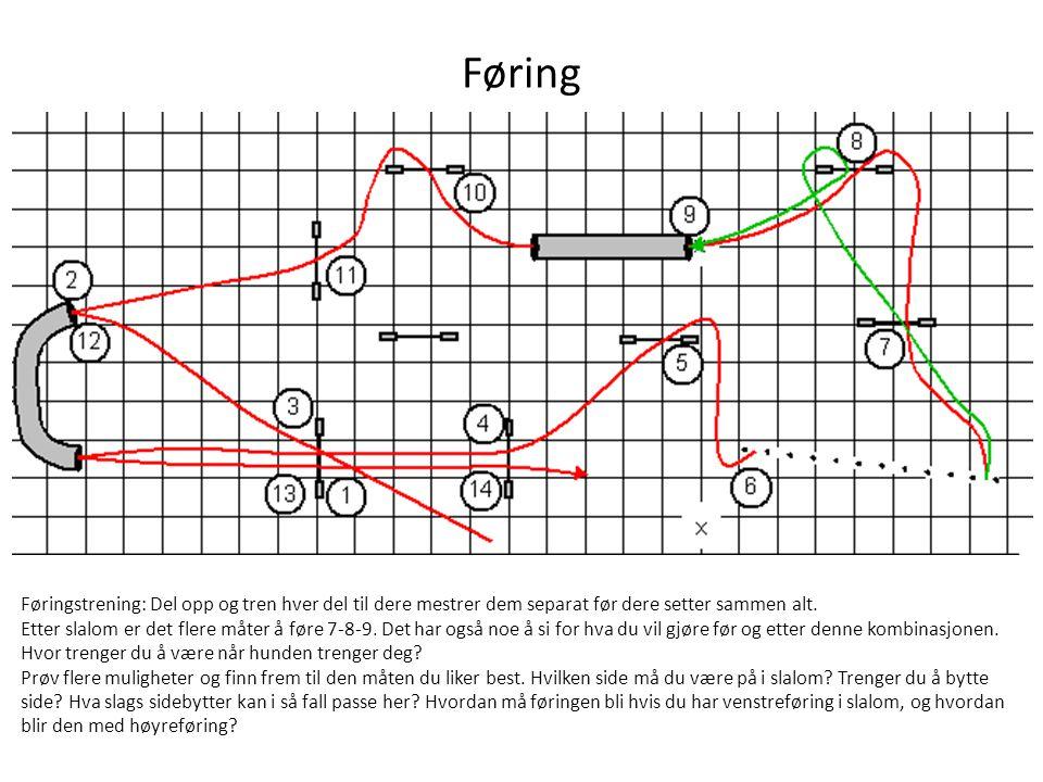 Føring Føringstrening: Del opp og tren hver del til dere mestrer dem separat før dere setter sammen alt.