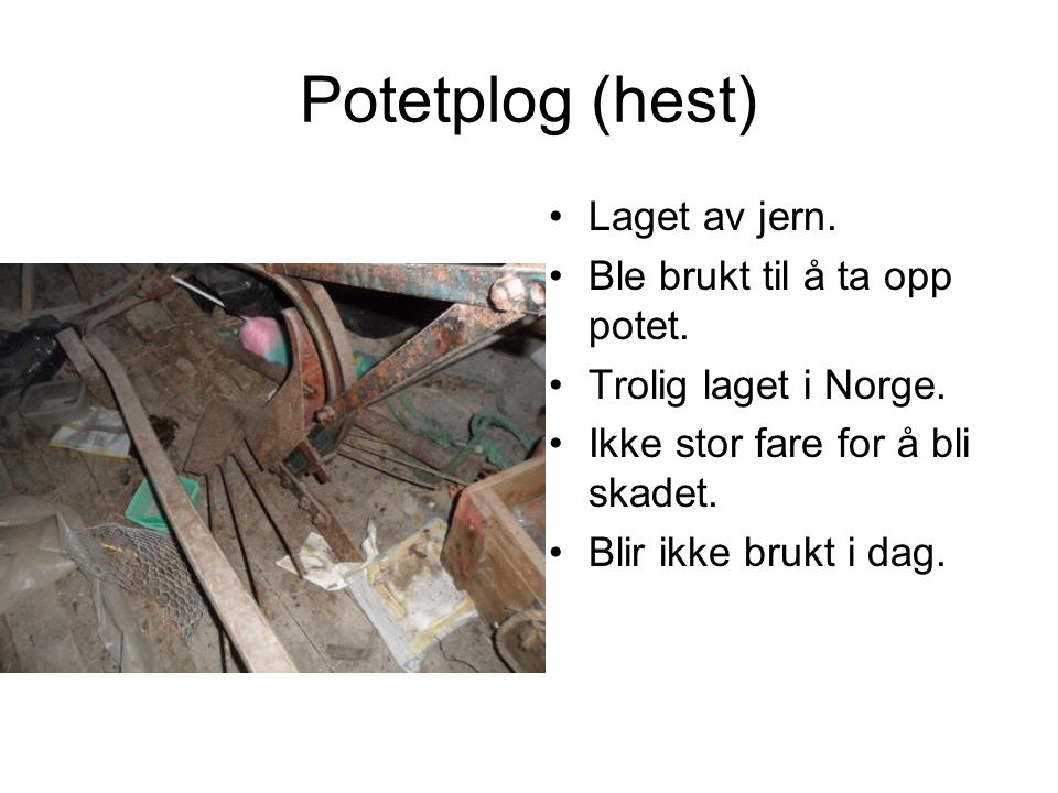 Potetplog (hest) Laget av jern. Ble brukt til å ta opp potet.
