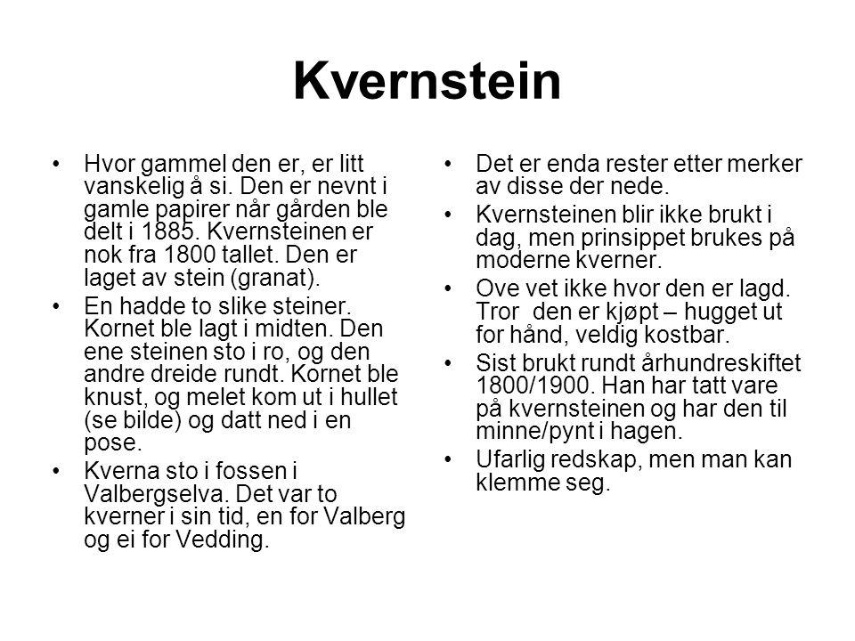 Kvernstein