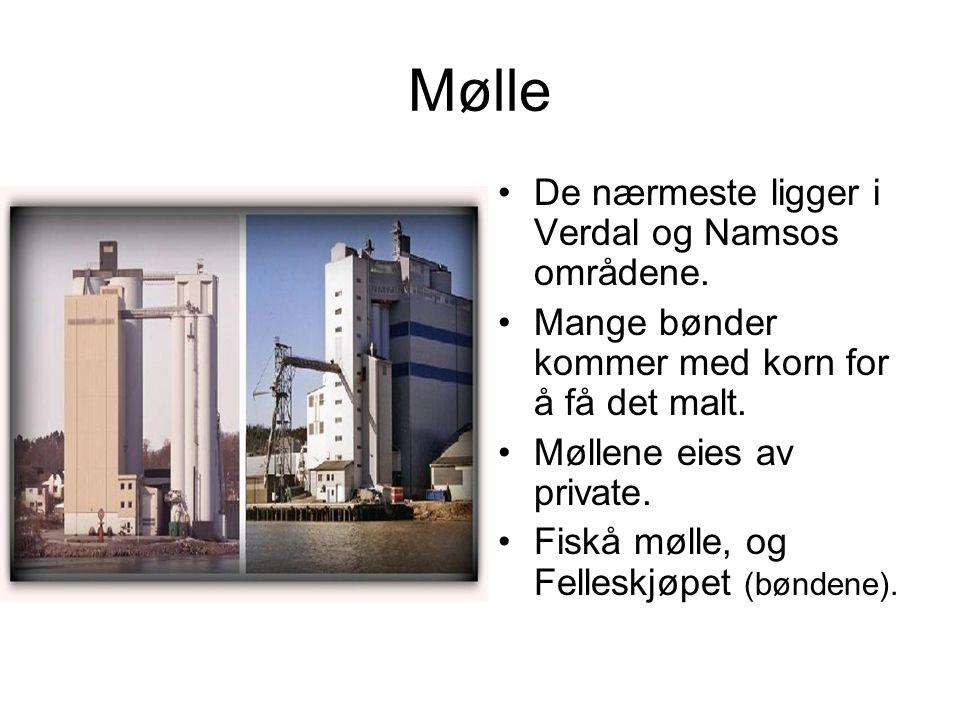 Mølle De nærmeste ligger i Verdal og Namsos områdene.