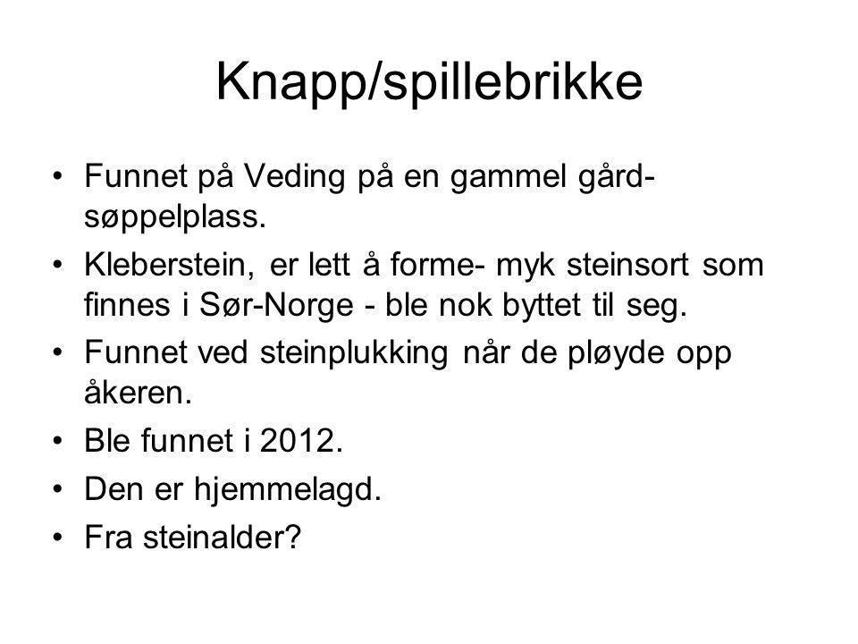 Knapp/spillebrikke Funnet på Veding på en gammel gård- søppelplass.