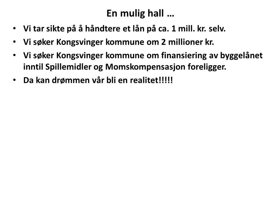 En mulig hall … Vi tar sikte på å håndtere et lån på ca. 1 mill. kr. selv. Vi søker Kongsvinger kommune om 2 millioner kr.