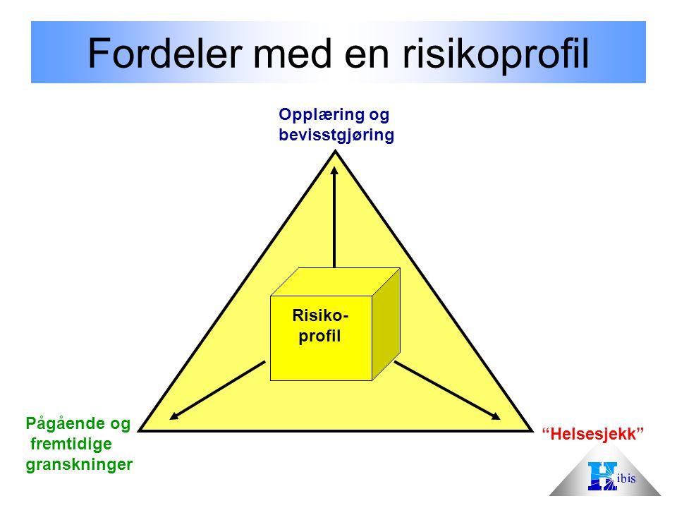 Fordeler med en risikoprofil