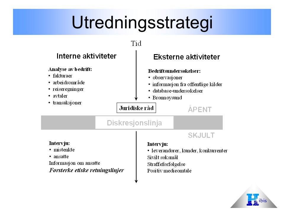 Utredningsstrategi