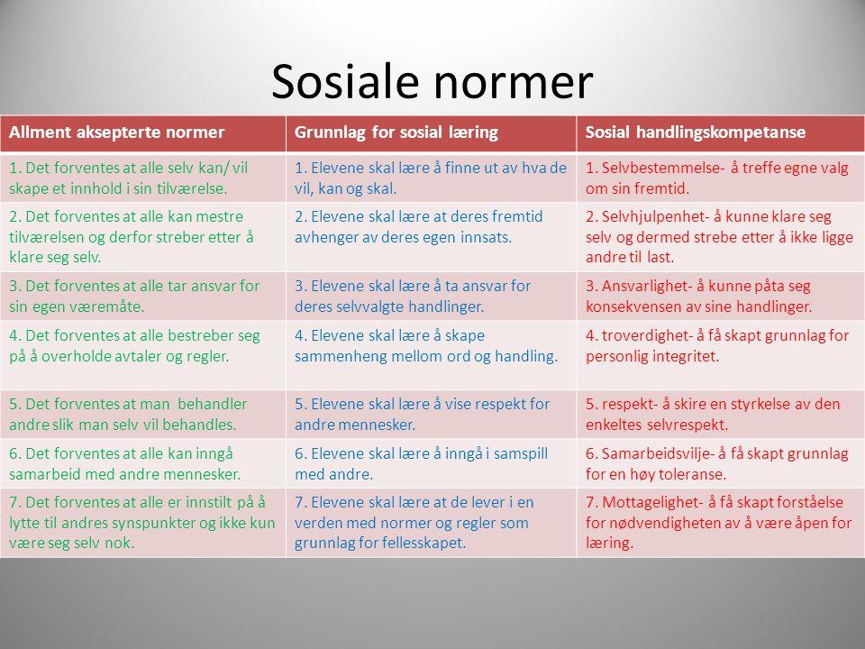 Sosiale normer Allment aksepterte normer Grunnlag for sosial læring