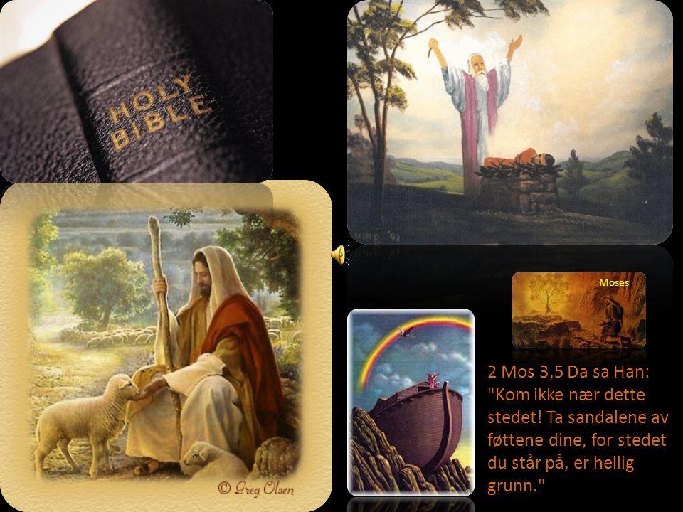 Moses 2 Mos 3,5 Da sa Han: Kom ikke nær dette stedet.