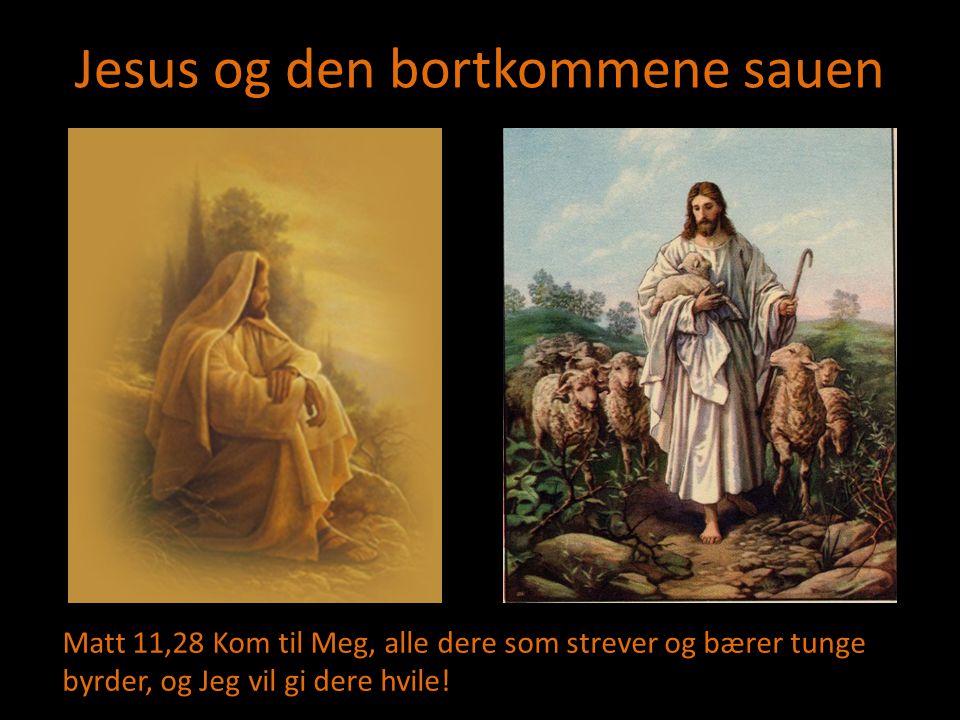 Jesus og den bortkommene sauen