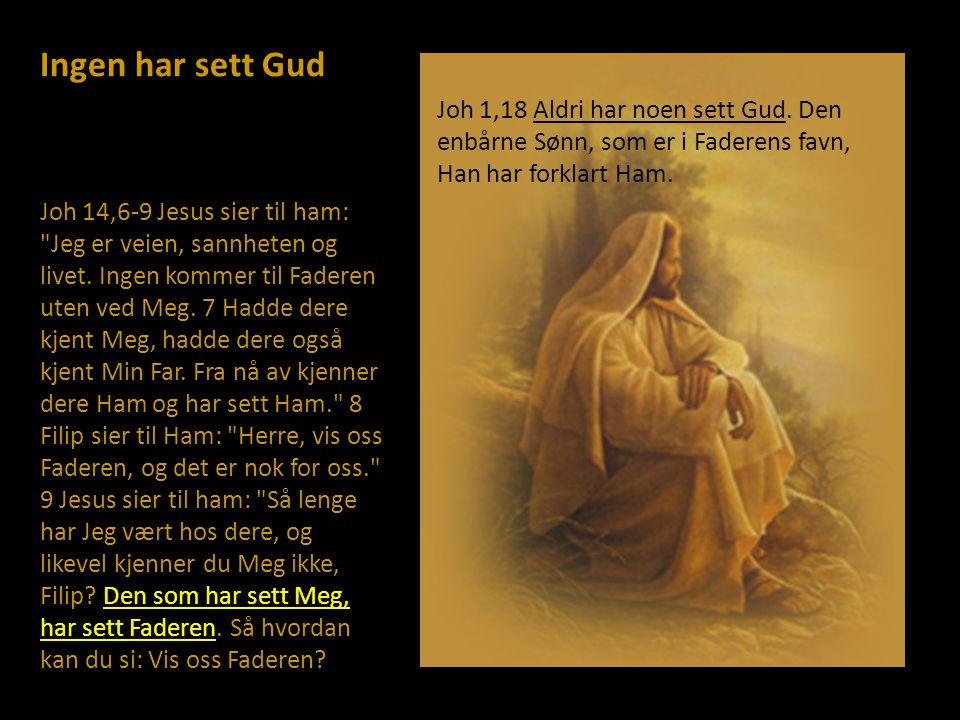 Ingen har sett Gud Joh 1,18 Aldri har noen sett Gud. Den enbårne Sønn, som er i Faderens favn, Han har forklart Ham.
