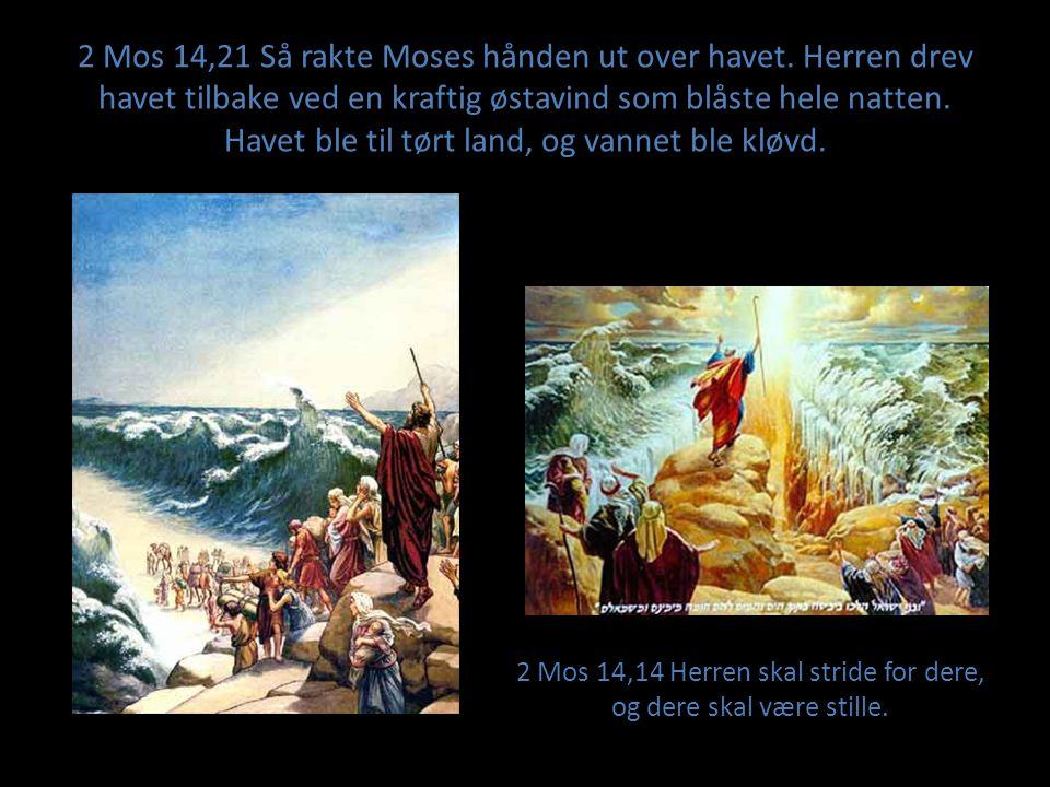 2 Mos 14,14 Herren skal stride for dere, og dere skal være stille.