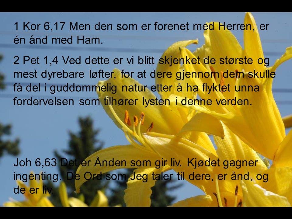 1 Kor 6,17 Men den som er forenet med Herren, er én ånd med Ham.