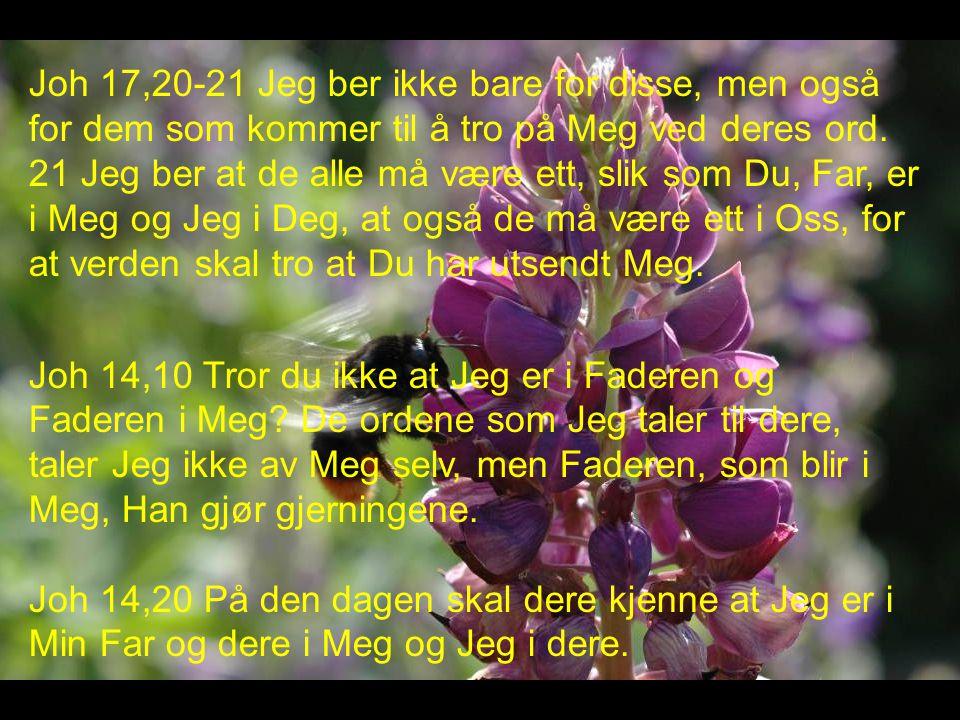 Joh 17,20-21 Jeg ber ikke bare for disse, men også for dem som kommer til å tro på Meg ved deres ord. 21 Jeg ber at de alle må være ett, slik som Du, Far, er i Meg og Jeg i Deg, at også de må være ett i Oss, for at verden skal tro at Du har utsendt Meg.