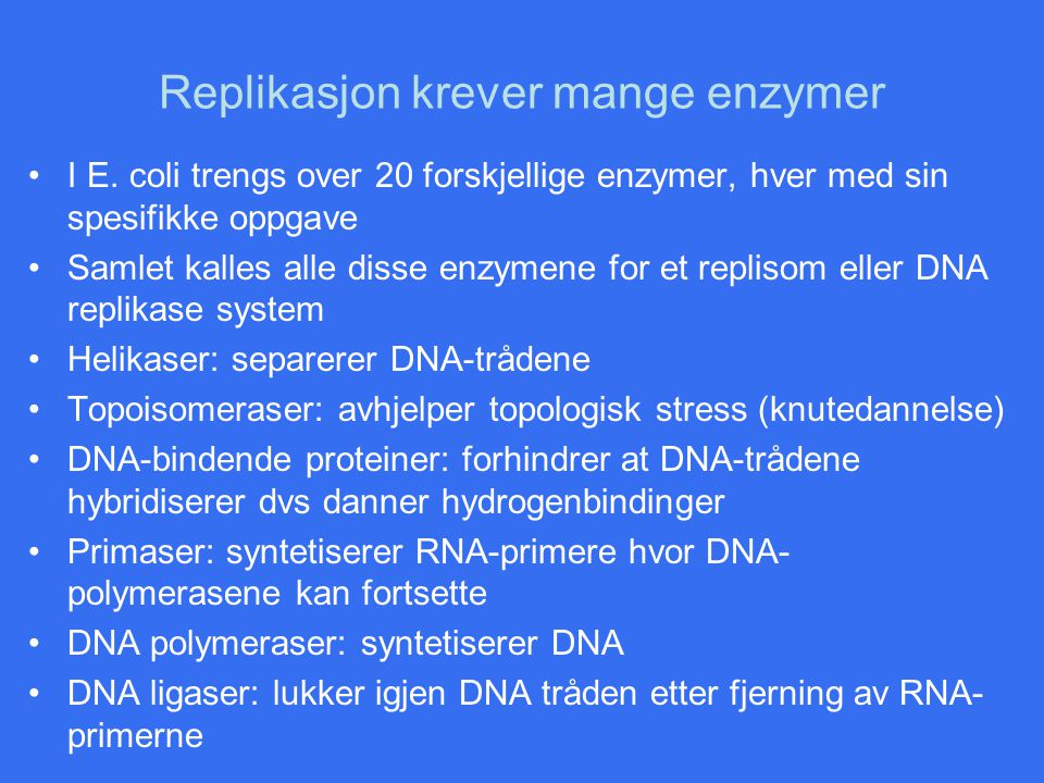 Replikasjon krever mange enzymer