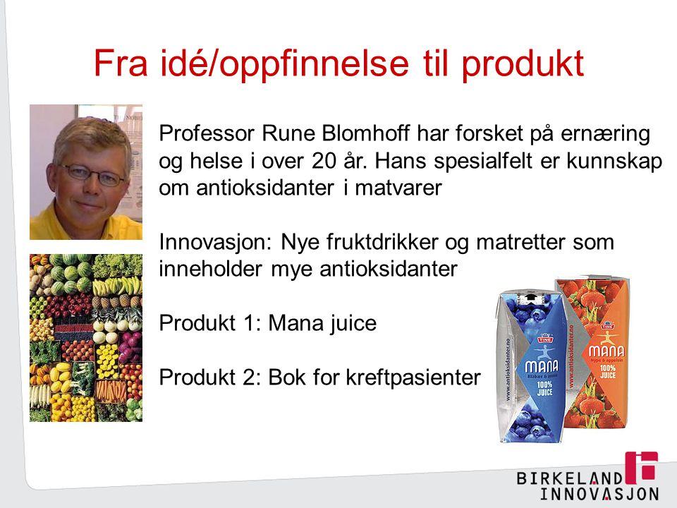Fra idé/oppfinnelse til produkt