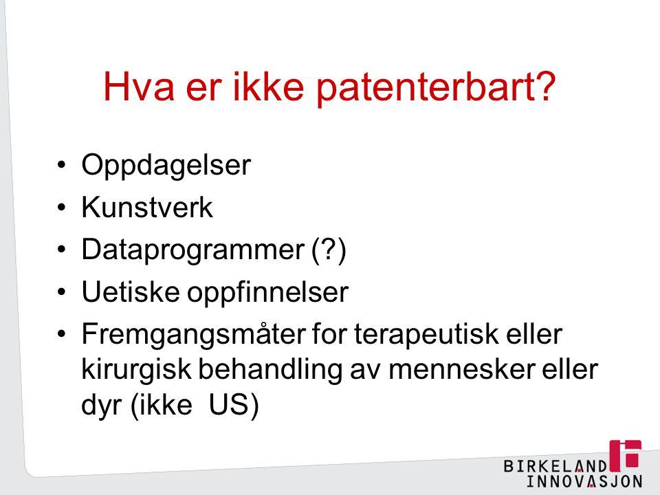 Hva er ikke patenterbart