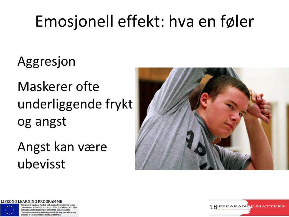Emosjonell effekt: hva en føler