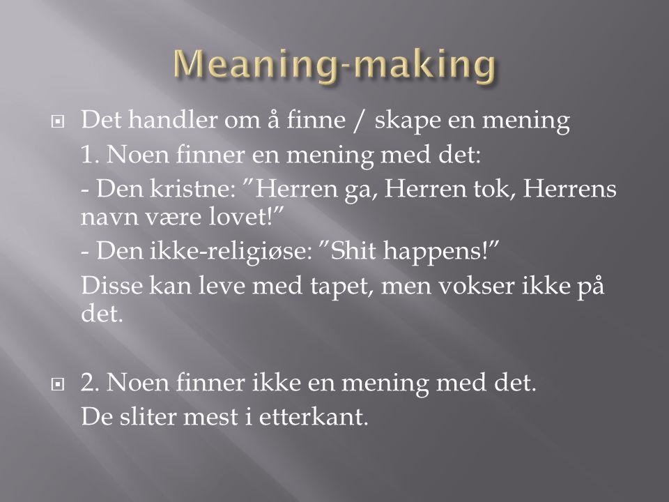 Meaning-making Det handler om å finne / skape en mening