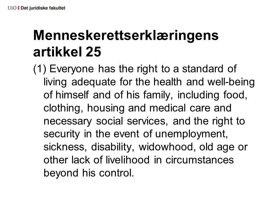 Menneskerettserklæringens artikkel 25
