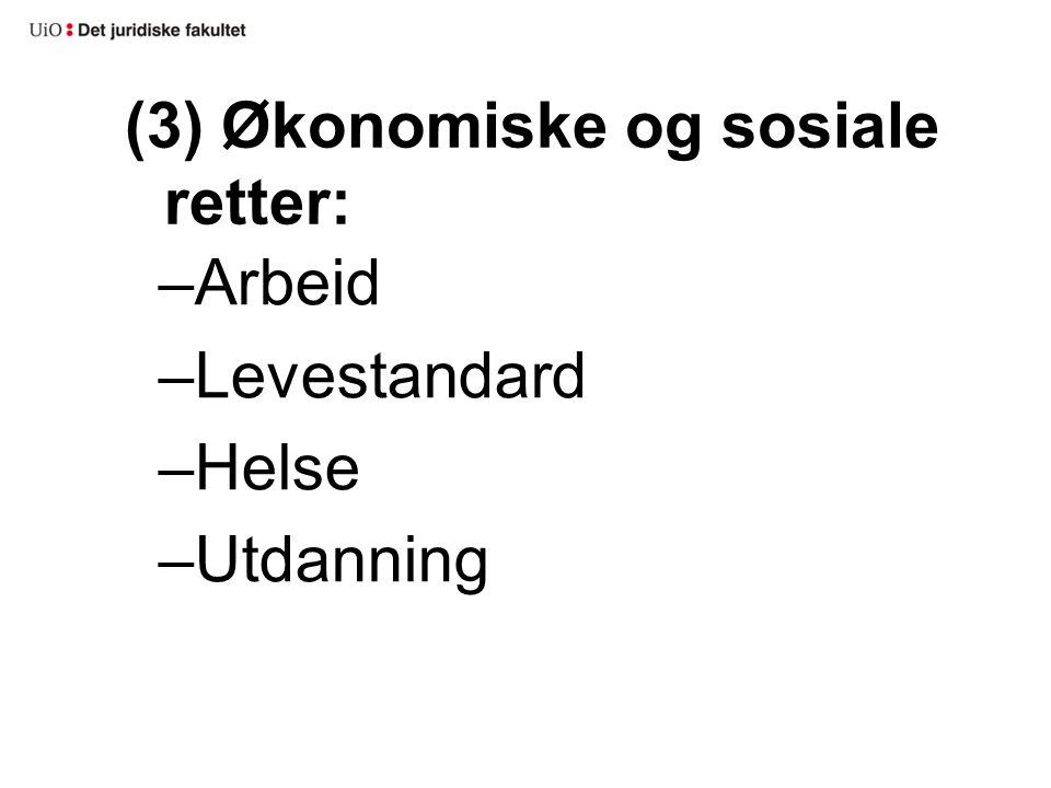 (3) Økonomiske og sosiale retter: