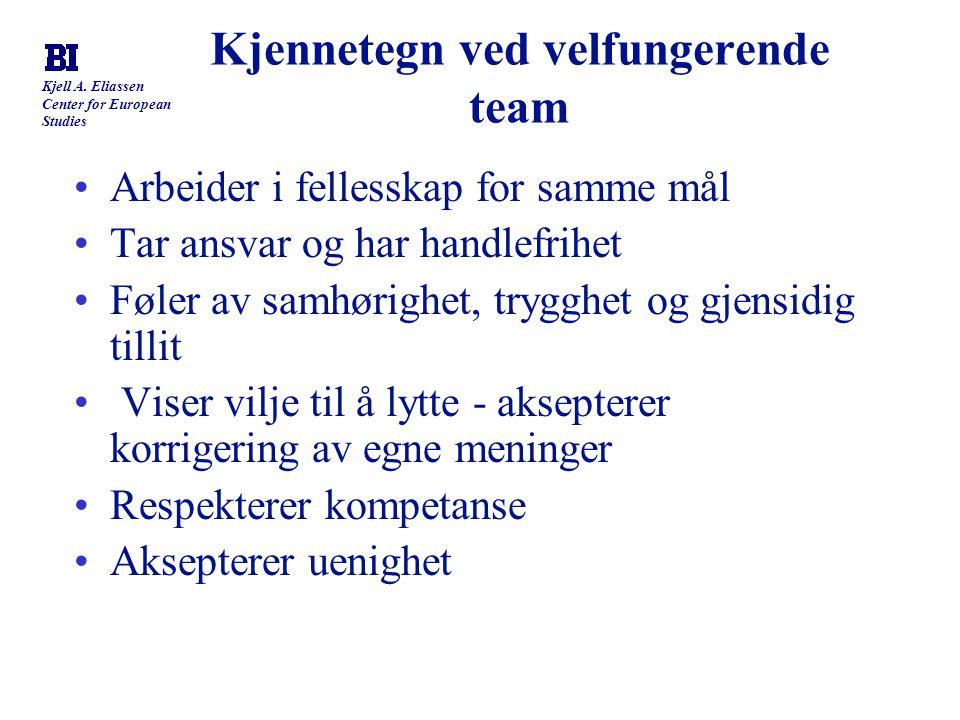 Kjennetegn ved velfungerende team