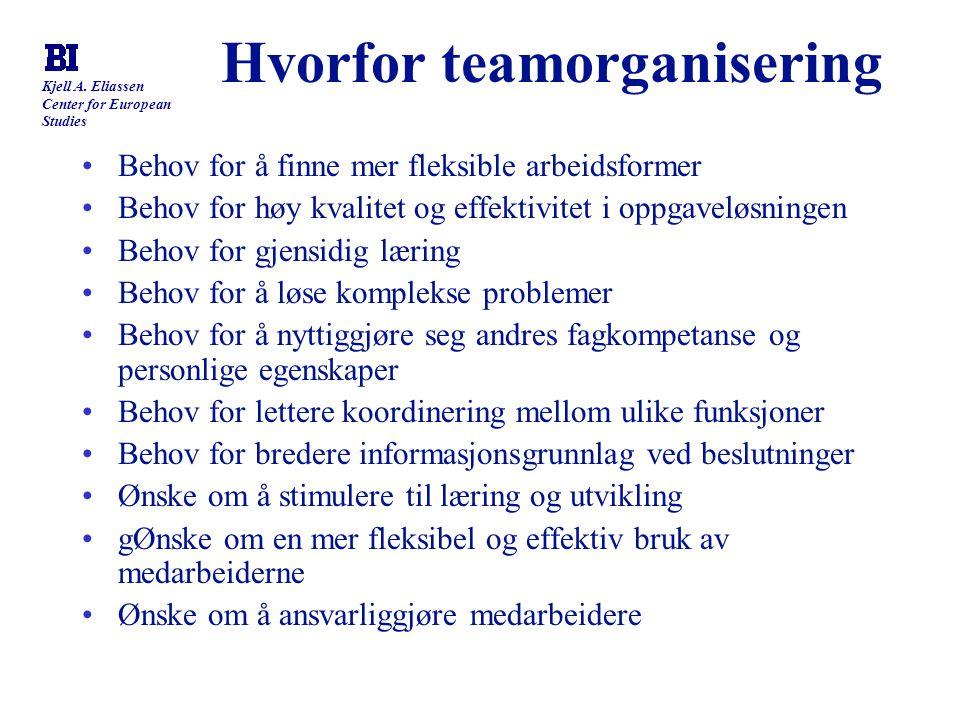 Hvorfor teamorganisering