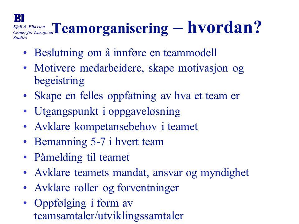 Teamorganisering – hvordan