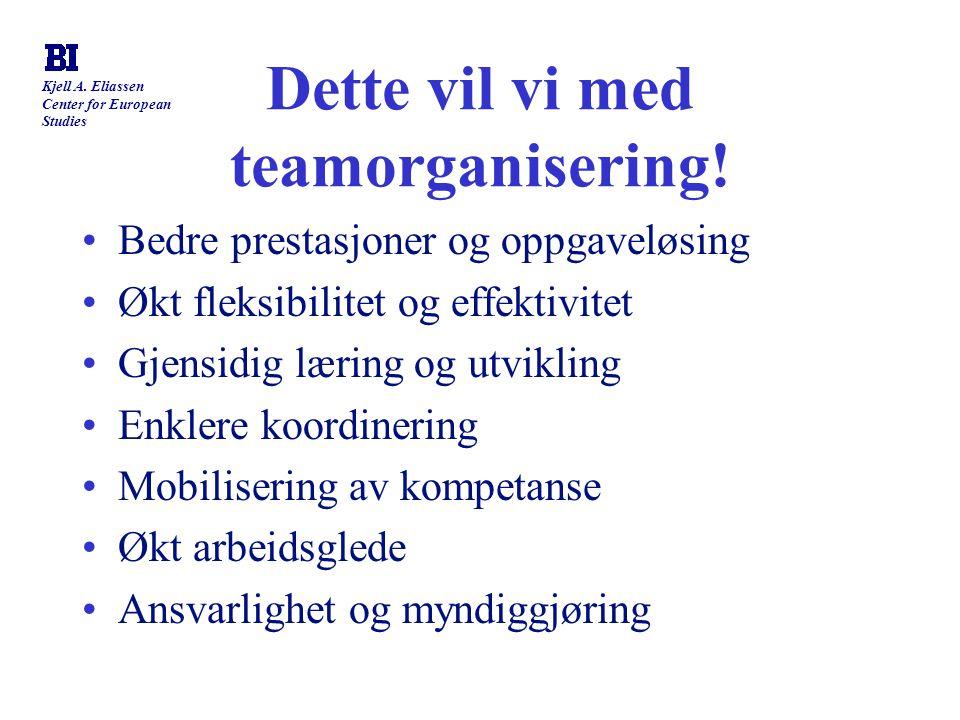 Dette vil vi med teamorganisering!