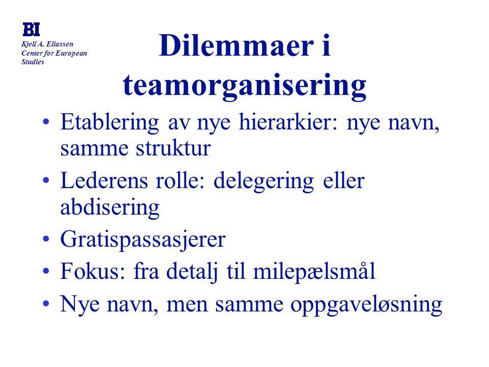 Dilemmaer i teamorganisering