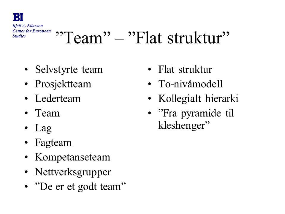 Team – Flat struktur