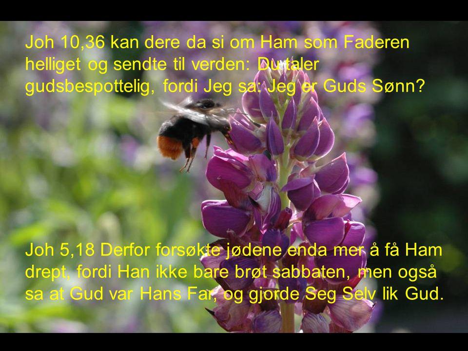 Joh 10,36 kan dere da si om Ham som Faderen helliget og sendte til verden: Du taler gudsbespottelig, fordi Jeg sa: Jeg er Guds Sønn