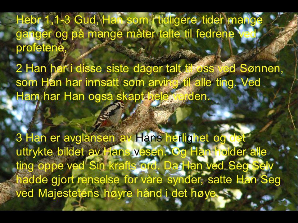 Hebr 1,1-3 Gud, Han som i tidligere tider mange ganger og på mange måter talte til fedrene ved profetene,
